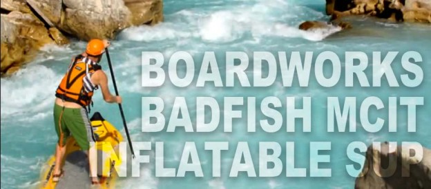 boardworks-badfish